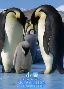 雪宝一个小企鹅的故事剧照