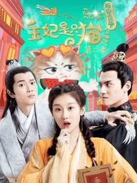 报告王爷王妃是只猫第二季剧照