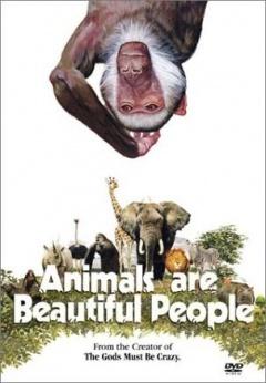 可爱的动物剧照