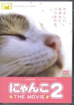 猫咪物语2剧照