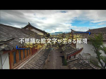 丽江旧市街-诞生东巴象形文字的秘境剧照