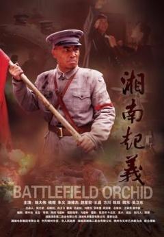 湘南起义剧照