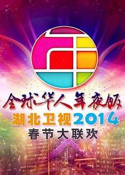湖北卫视2014春节大联欢剧照