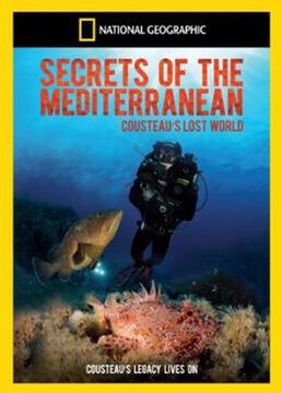 地中海的秘密剧照