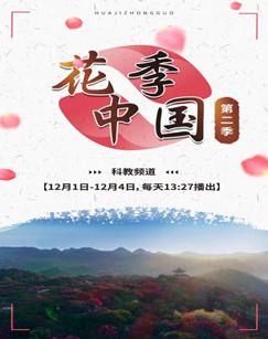 花季中国第二季剧照