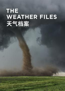 天气档案剧照