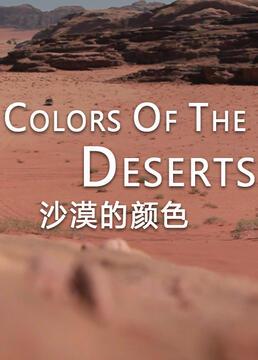 沙漠的颜色剧照