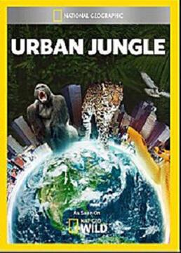 都市丛林生存法则剧照