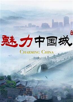 魅力中国城第二季剧照