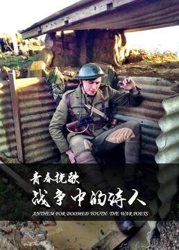 青春挽歌战争中的诗人剧照
