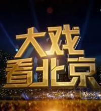大戏看北京剧照
