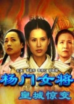 杨门女将之皇城惊变剧照