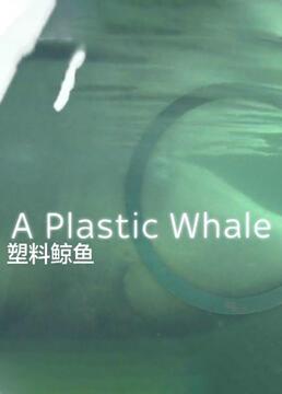 塑料鲸鱼剧照