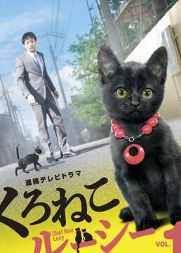 黑猫露西剧照