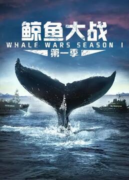 鲸鱼大战第一季剧照