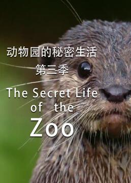 动物园的秘密生活第三季剧照