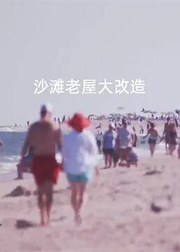 沙滩老屋大改造剧照