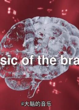 大脑的音乐剧照