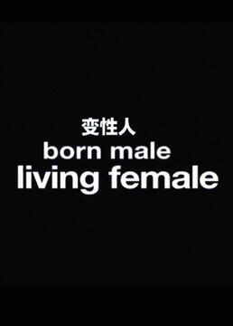 总务部长是个变性人
