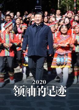 2020领袖的足迹剧照
