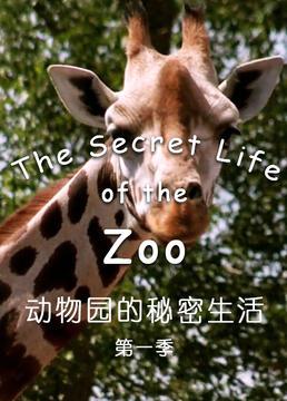 动物园的秘密生活第一季剧照