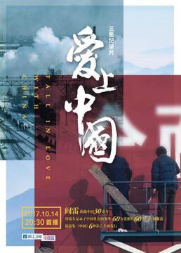 爱上中国剧照