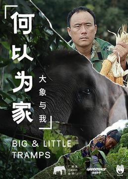 何以为家大象与我剧照