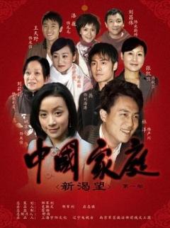中国家庭第一部剧照